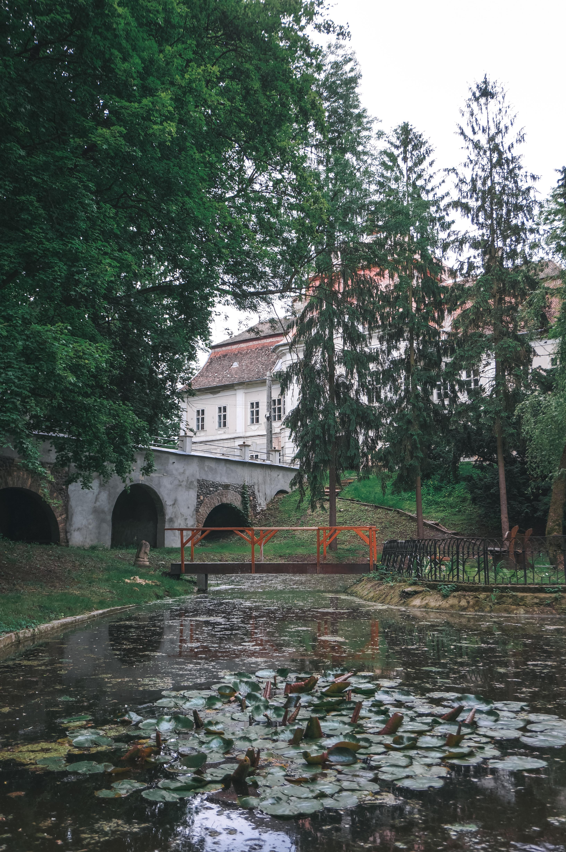 marosvolgye-6-1